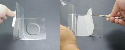 発光試薬添加イメージのコピー