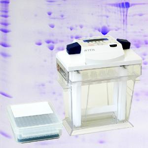 2-D Electrophoresis (1st Dimension - Isoelectric Focusing)