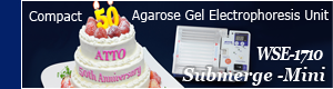 Compact Agarose Gel Electrophoresis Unit with Power Supply, Hi-speed (High voltage 150V), and alarm timer function